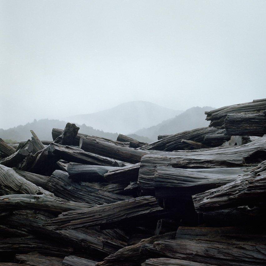 Huon Pine
